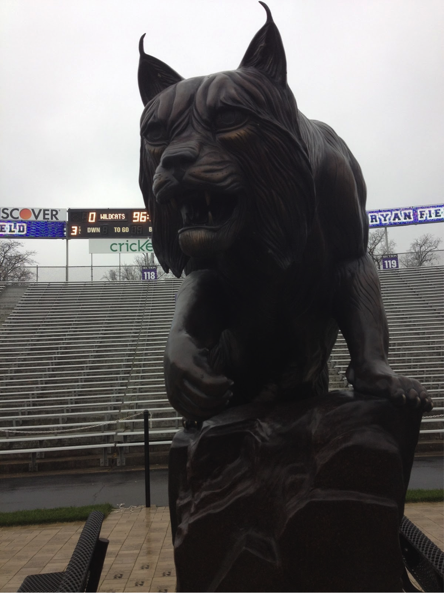 The Wildcat statue at Ryan Field looks mighty fierce, but how does it match up against other Big Ten mascots? WNUR's Erik Bremer is on the case.